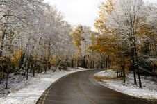Free Road And Woods After Late Fall Snow Royalty Free Stock Photos - 25720878