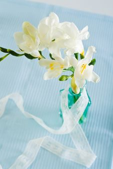 Free Freesia Flowers Royalty Free Stock Image - 25722636