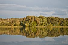 Free Trees And Lake Royalty Free Stock Images - 25724069