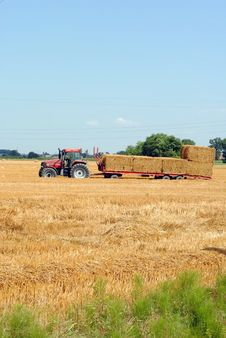 Free Tractors Load Bales Of Hay Royalty Free Stock Image - 25724586