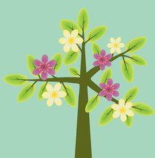 Free Flowering Tree Stock Photography - 25725592