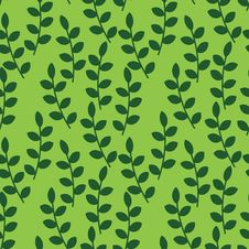 Free Foliage Pattern Stock Images - 25725614