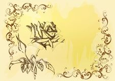 Beautiful Vector Background With Handdrawn Rose Stock Photos