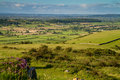 Free View From Crook Peak Somerset Royalty Free Stock Photography - 25730207