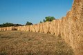 Free Row Of Bales Of Hay Stock Images - 25730924