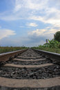 Free Railroad Perspective Royalty Free Stock Photo - 25736765