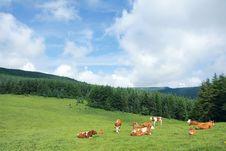 Free Scenery Of Mountain Stock Photo - 25732460