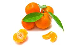Free Tangerines On A Branch Royalty Free Stock Image - 25734836