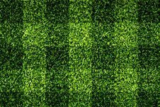Free Grass Checkered Royalty Free Stock Image - 25739716