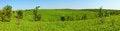 Free Green Meadow Stock Photo - 25743390