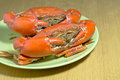 Free Steamed Crabs Stock Photos - 25749883