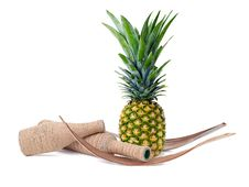 Free Still Life Of Pineapple And Decorated Bottles Stock Photos - 25746103