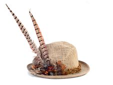 A Hunting Hat With Pheasant Feathers Royalty Free Stock Photos