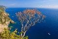 Free Sea View Royalty Free Stock Photo - 25755265