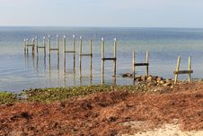 Broken Pier Stilts Stock Photography