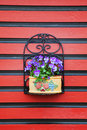 Free Flowers On Red Wall Stock Images - 25762774