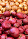 Free Red And White Onions Royalty Free Stock Image - 25762986