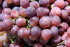 Free Red Grapes Royalty Free Stock Image - 25762976