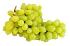 Free Fresh Green Grapes Stock Photo - 25770120