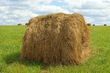 Free Stack Of Hay Harvested Royalty Free Stock Images - 25774009