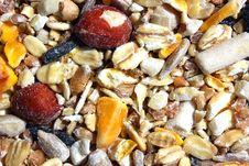 Mixed Bird Food Royalty Free Stock Photos