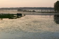 Free The Fog Over The Pond Royalty Free Stock Photos - 25782268