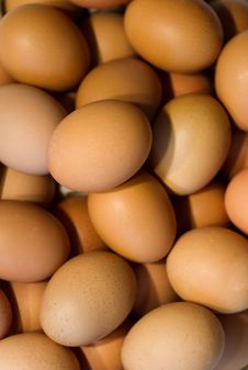 Free Brown Eggs, Unsorted Stock Image - 25791221