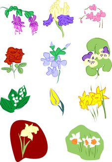 Free Flowers: Pansy Narcissus Orchid Iris Fuchsia Rose Stock Photography - 25793662