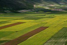 Free Castelluccio /spring Landscape Stock Photography - 2582682