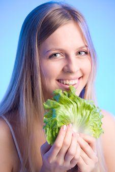 Fresh Lettuce Leaf Stock Image
