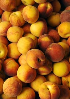 Free Peaches Stock Photo - 2585860