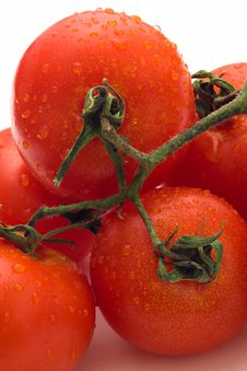 Free Red Tomatoes With Water Drops Royalty Free Stock Image - 2589156