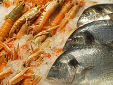 Free Prawns & Fish For Sale Stock Image - 25800961