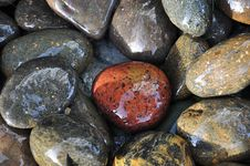 Free Brown And Grey Stones Royalty Free Stock Photos - 25808148