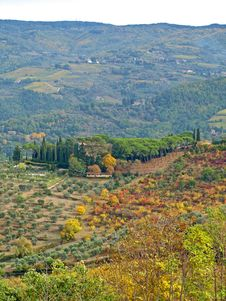 Autumn Colours In Chianti Countryside Royalty Free Stock Photos