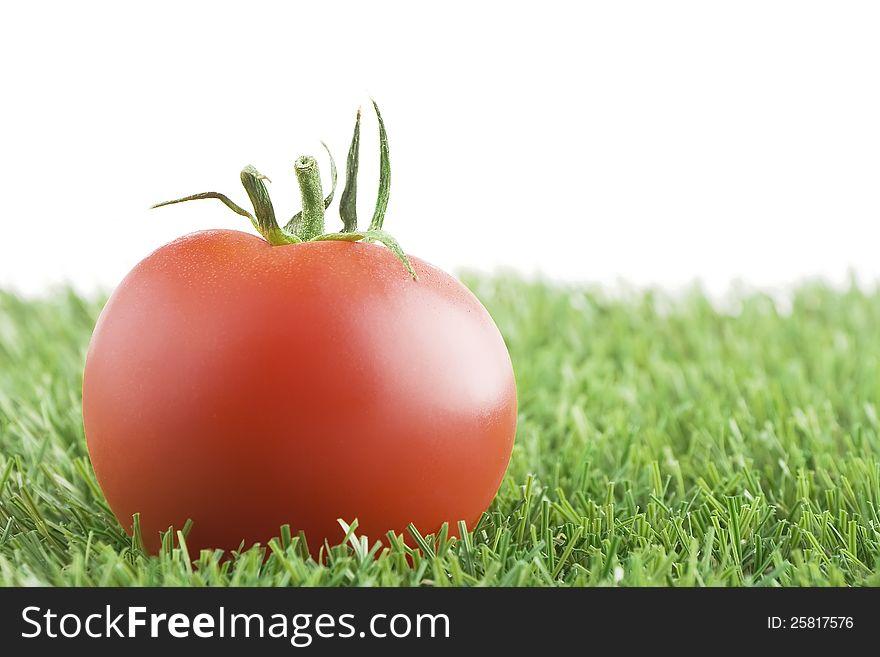 Tomato on grass