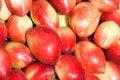 Free Nectarine Royalty Free Stock Photography - 25822227