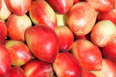 Free Nectarine Royalty Free Stock Photography - 25822227