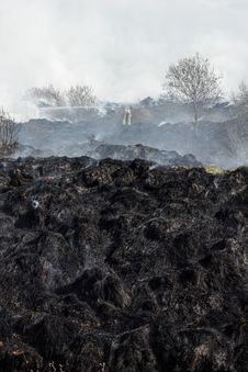 Free Burned Grass Residues Stock Image - 25822731