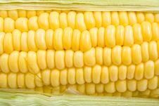 Free Corn Stock Photography - 25834762
