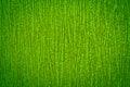 Free Organic Green Background Stock Photos - 25846133