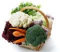 Free Set Of Various Cabbage Stock Photos - 25847303