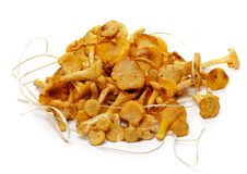 Free Heap Of Fresh Raw Chanterelle Mushrooms Stock Image - 25847311