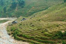 Free Rice Terraces And River Stock Image - 25851731