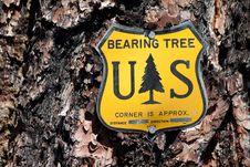 Free Bearing Tree Sign Stock Photo - 25854240