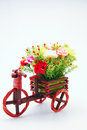 Free Flower Flower With Isolated Royalty Free Stock Image - 25861246
