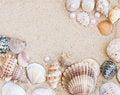 Free Natural Shell Border Royalty Free Stock Photos - 25867158