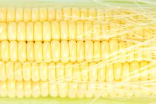 Free Fresh Corn Closeup Stock Photos - 25868833