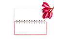 Free Note Book Paper With Pink Frangipani Flower Stock Photo - 25871820