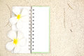 Free White Notebook With Frangipani Flower On The Sand Royalty Free Stock Images - 25871909